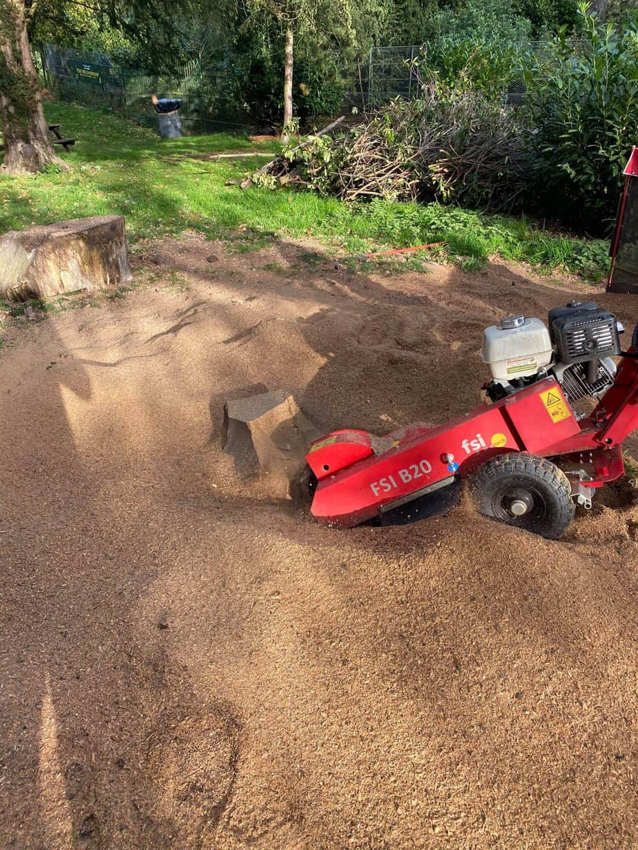 stump grinding hitchin